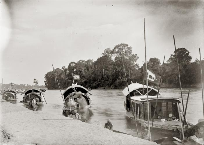 A flotilla of boats that were